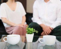 復縁した夫婦と観葉植物